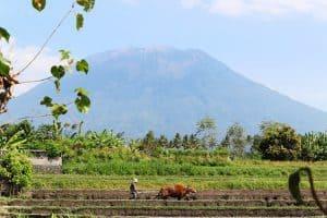 Agung volcan paysage bali