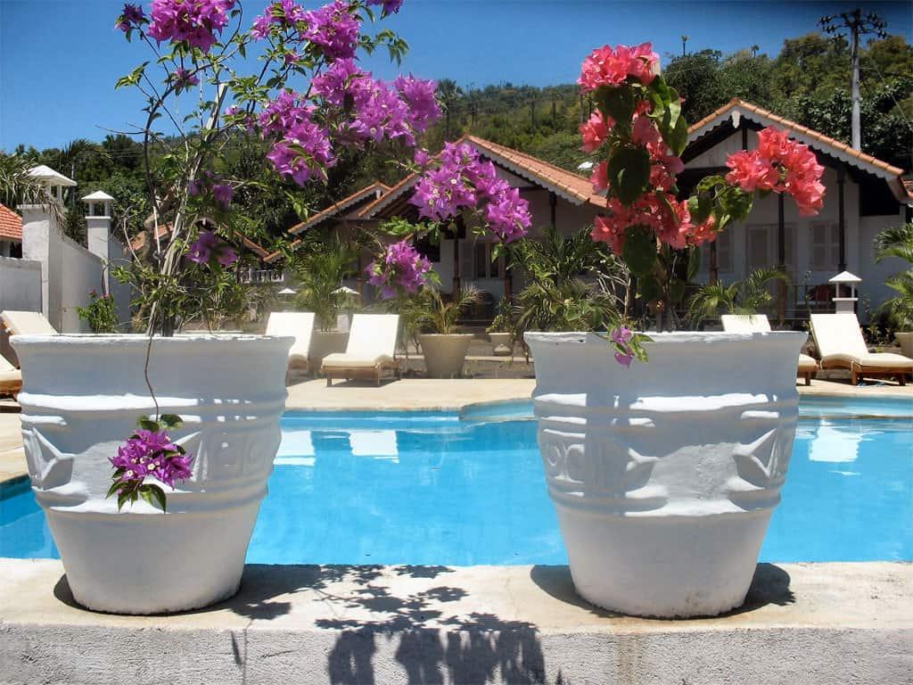 bali hotel amed fleurs piscine