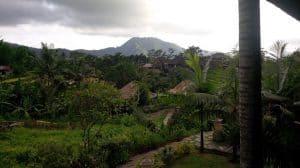 bali intérieur des terres rizières