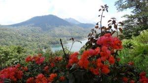 Bali mount batur Bali Authentique