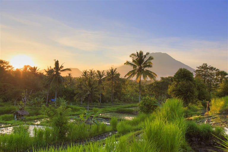 bali rizière volcan agung levé de soleil