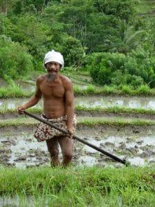 Bali Agriculteurs de riz au Bali Authentique