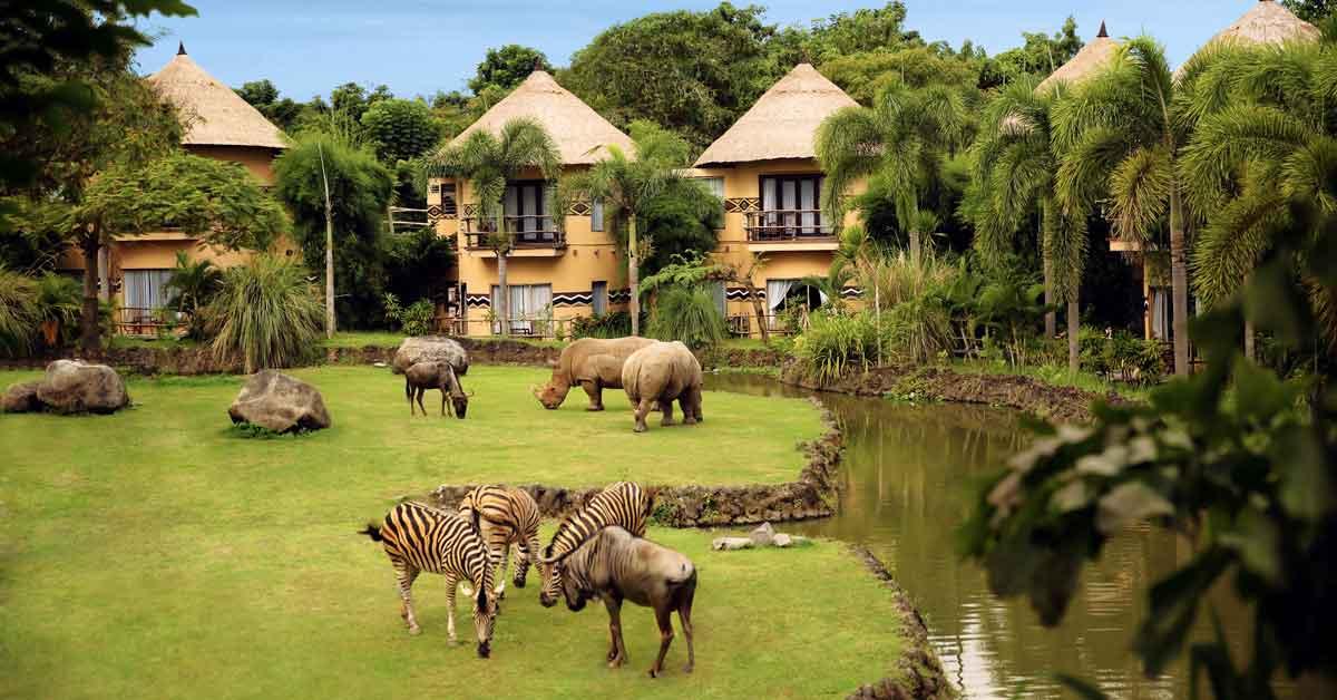 bali safari marine park indonesie