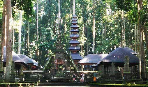 Bali Temple Sangeh Chemin Foret Lumière Mousse Mystique Hindou Indonésie