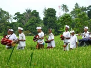 Bali traditionnel rice field ngelawang barong