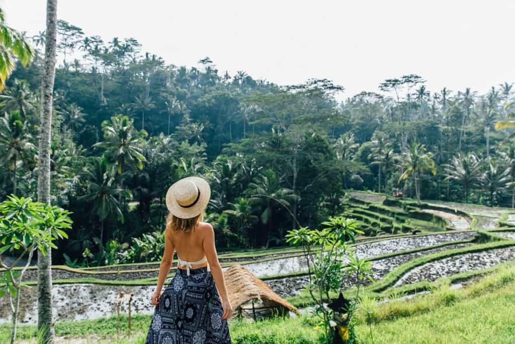 Bali Ubud rizière