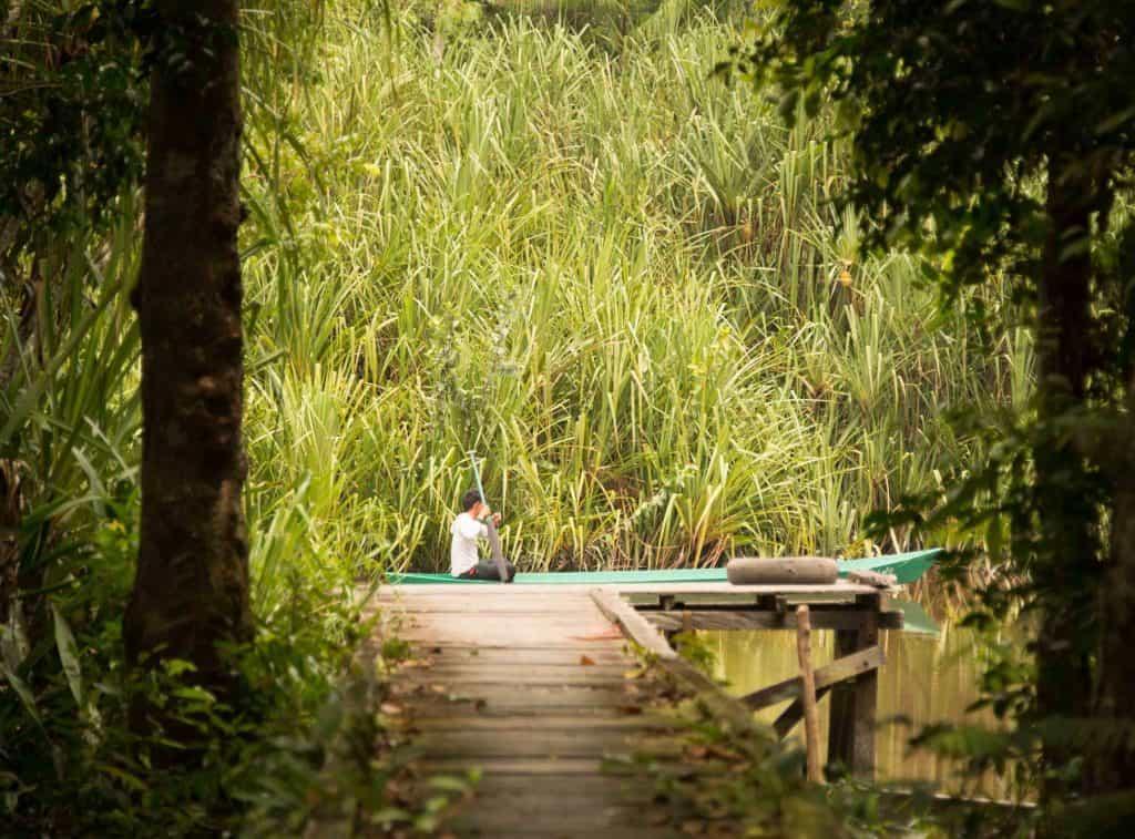 Borneo Tanjung Puting croisière rivière pirogue Kalimantan Indonésie