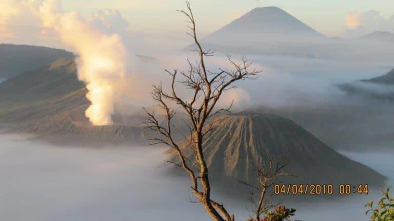 Bromo volcan Java arbre fumée