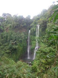 cascade dans la jungle bali