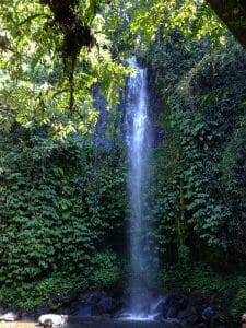 cascade nature waterfall bali