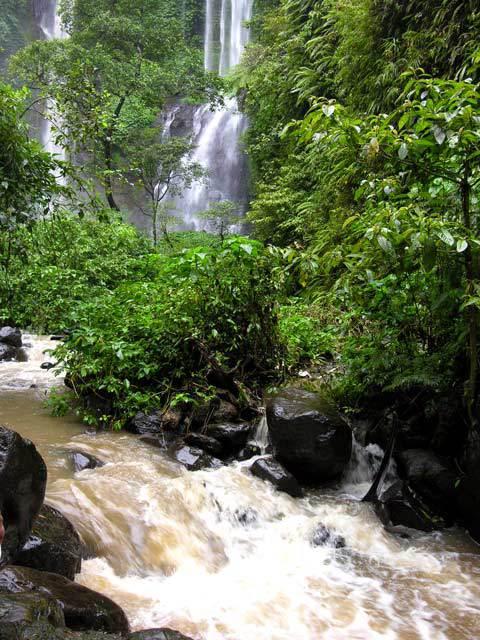 chute d'eau bali nature cascade