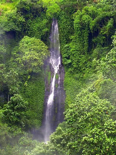 chute d'eau bali nature indonesie