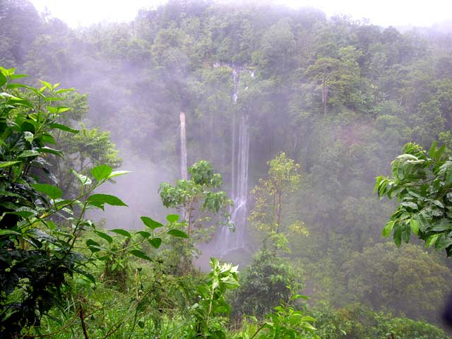 chute d'eau bali nature jungle