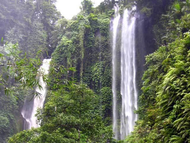 chute d'eau bali nature luxuriante indonesie