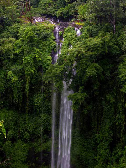 chute d'eau bali nature luxuriante