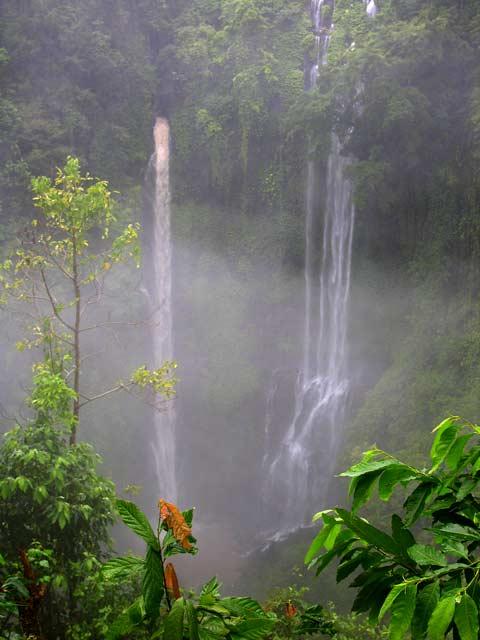 chute d'eau bali nature paysage indonesie