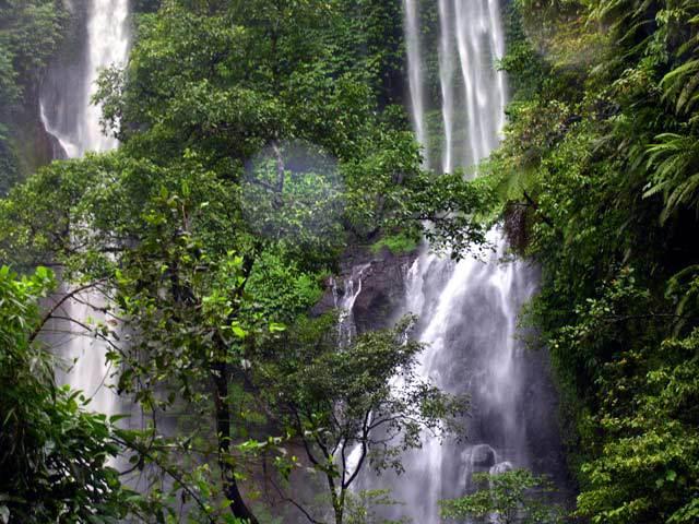 chute d'eau bali nature paysage