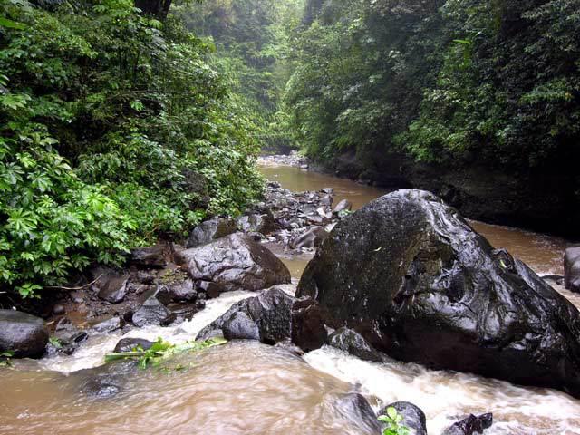 chute d'eau bali nature pureté