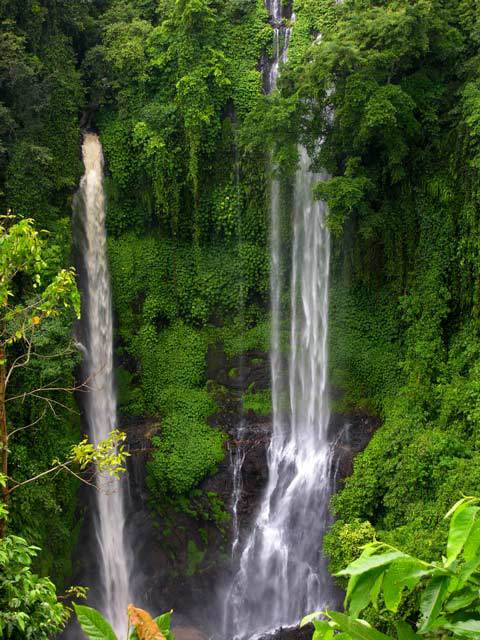 chute d'eau bali nature trek