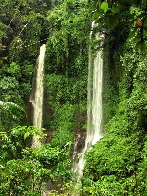 chute d'eau bali nature trekking