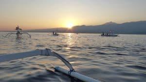 dauphins bali coucher de soleil indonésie
