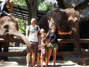 trek éléphants bali avec enfants
