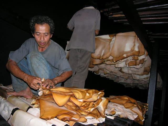 ferme de caoutchouc ile java