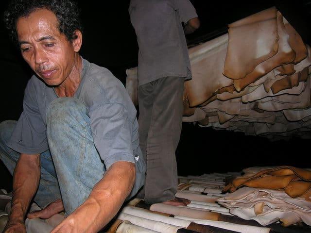 ferme de caoutchouc java visite indonesie