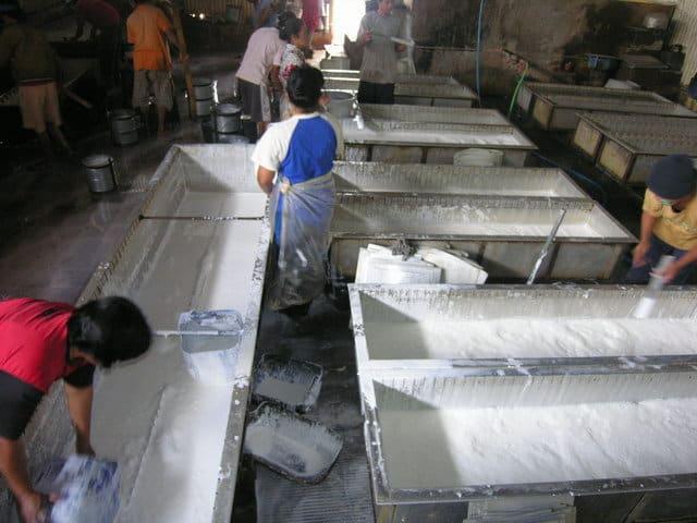ferme de caoutchouc java visite traditionnelle
