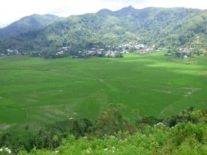 flores indonesie riziere campagne paysage