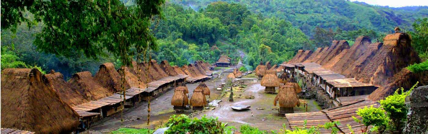flores village traditionnel indonésie
