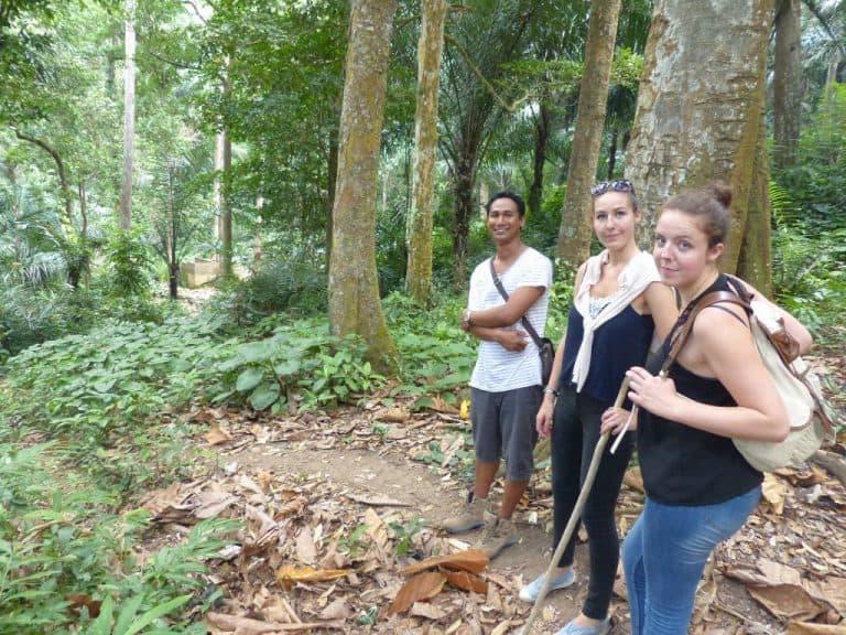 trek jungle indonésie guide