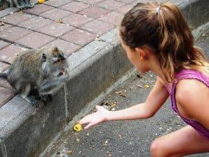 ubud fôret des singes enfants