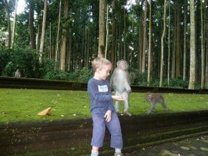forêt des singes activité pour enfants