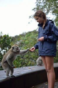 forêt des singes ubud activité enfants