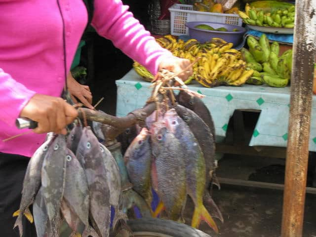 gili air ile lombok village marché poisson