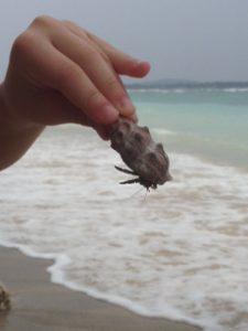 gili island, bali lombok