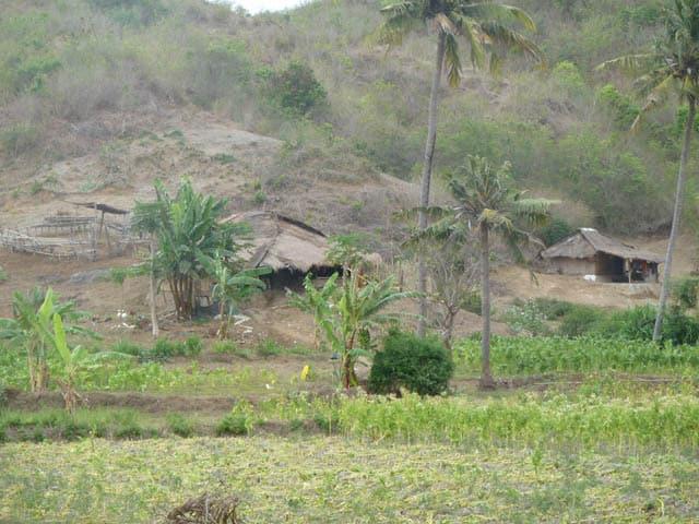habitation traditionnelle lombok montagne