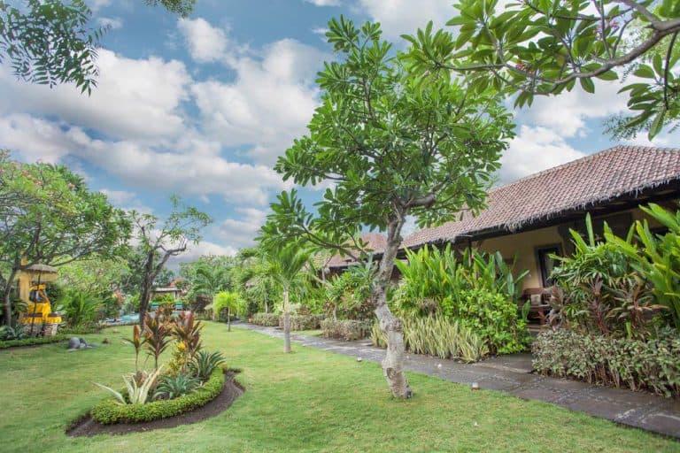 hotel bali indonésie jardin