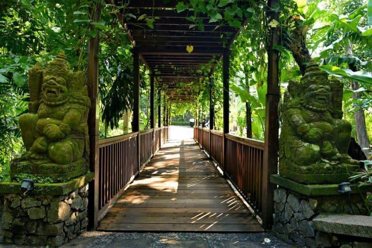 hotel bali indonésie parc