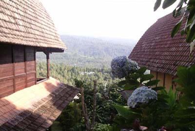 hotel bali munduk vue nature