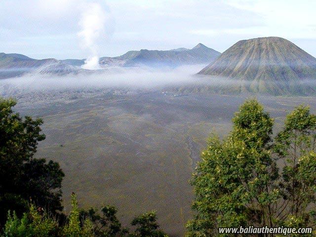 hotel java bromo probolinggo volcan