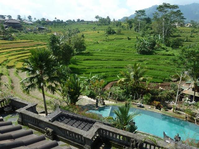 hotel bali sidemen piscine avec rizieres