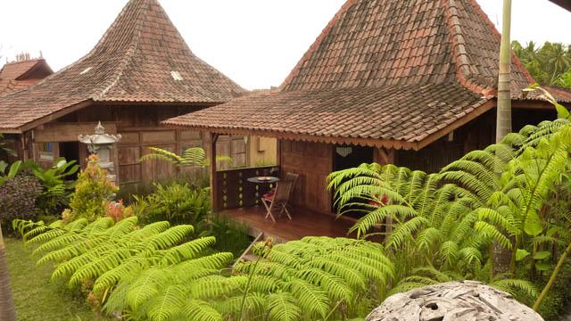 hotel bali ubud bungalow nature