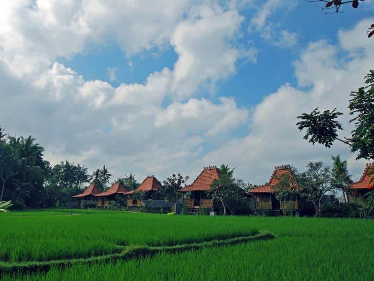 hotel bali ubud bungalow privée