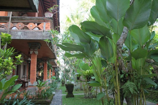 hotel Bali Ubud jardin