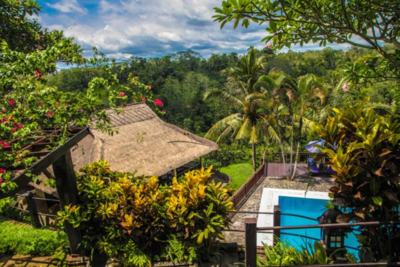 hôtel Bali Ubud piscine Ayung