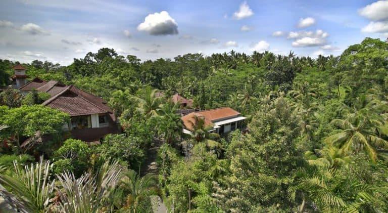 hotel bali ubud végétation bungalows
