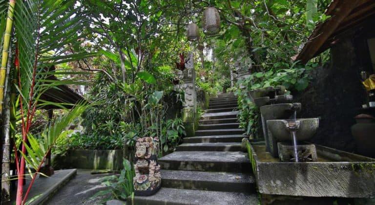 hotel bali ubud végétation parc