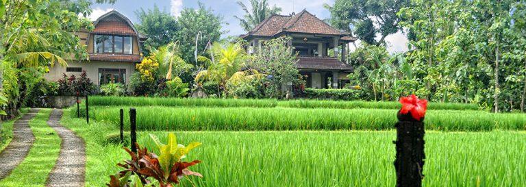 hotel Bali Ubud villas